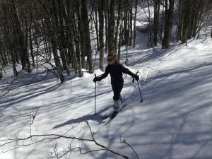 Primeras rutas con esquís de fondo