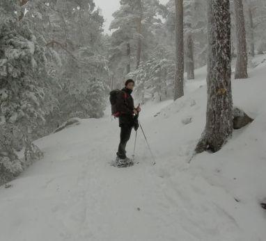 Ruta con raquetas de nieve en Madrid